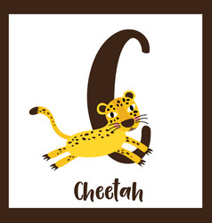 Letter c vocabulary jumping cheetah vector