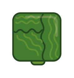 Lettuce green vegetable vector