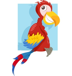 Macaw parrot cartoon vector