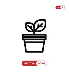 plant pot icon vector image