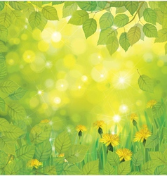 green flowers background vector image vector image