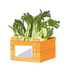 Fresh vegetable scallion in wooden basket vector