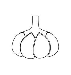 Garlic black color path icon vector