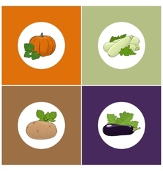 Set of Four Icons of Vegetables vector image