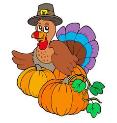 Thanksgiving turkey with pumpkins vector