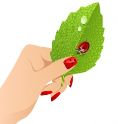Vector female's hand with leaf. vector image