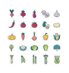 Vegetable veggies thin line and color icon set vector