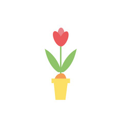 beautiful flower spring in pot vector image