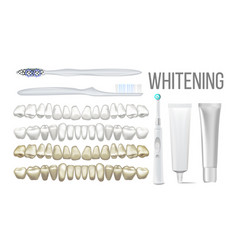 brush whitening clear teeth equipment set vector image