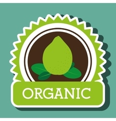 organic food fruit icon vector image