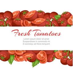 Tomato fresh farm vegetables cartoon vector