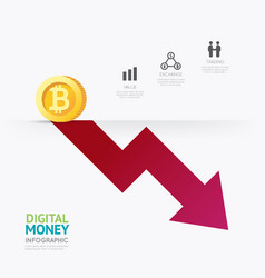 Infographic business digital cryptocurrency money vector