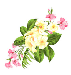 beautiful card with a wreath tropical flowers vector image