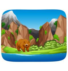 Brown bear in mountain scene vector
