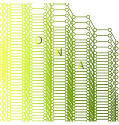 Dna design over white background vector