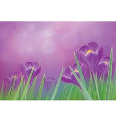 Flowers violet vector