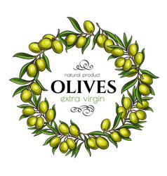 frame page design with branches olives vector image