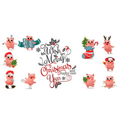 Happy chinese new year of pig set with christmas vector