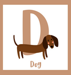 Letter d vocabulary dog vector