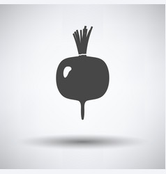 radishes icon vector image