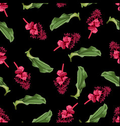 seamless pattern with tropical medinilla flowers vector image