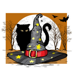 cat and wizard hat halloween concept vector image