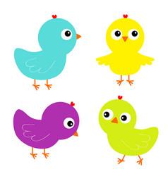 Colorful bird set icon face head chicken chick vector