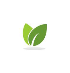 doble leaf logol vector image
