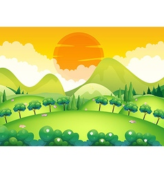 Scene with field and trees vector image vector image