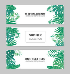 set of summer horizontal banners with tropical vector image