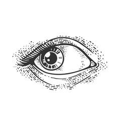 woman eye sketch vector image