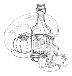 tomato ketchup and tequila hot sauce coloring vector image
