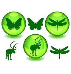 Bio or eco spheres vector