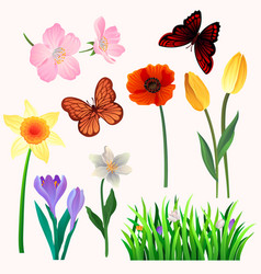 colorful set of beautiful spring flowers vector image