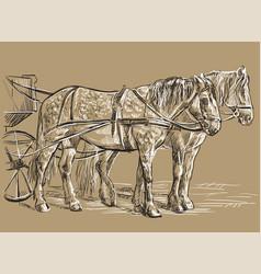 Harness horses vector