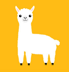 llama alpaca animal cute cartoon funny kawaii vector image