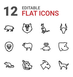 Mammal icons vector