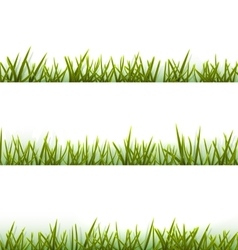 Realistic green grass collection isolated on white vector