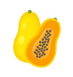 yellow whole and half papaya vector image