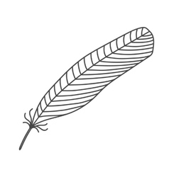 Black hand drawn feather vector