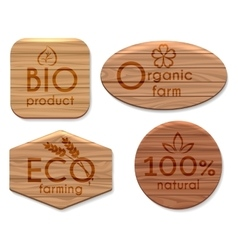 Eco natural product wooden labels vector image