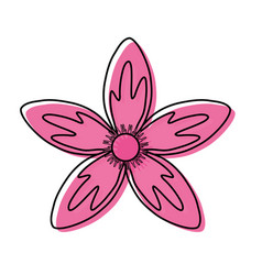 flower with petals pink vector image
