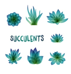 Graphic set of succulents isolated on white vector