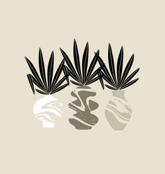 Hand drawn minimalistic with vases and palm vector