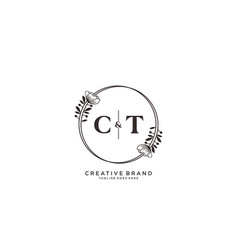 Initial ct letters hand drawn feminine and floral vector