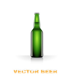 Light beer bottle vector