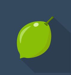 lime cartoon flat icondark blue background vector image
