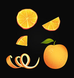 set parts orange vector image