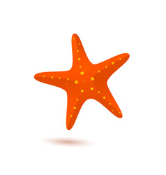 starfish icon vector image vector image