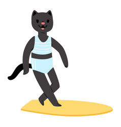surf cat animal surfer character surfing on vector image